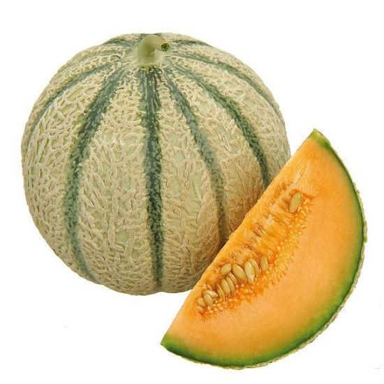 Bac 2.5L - Sorbet Melon