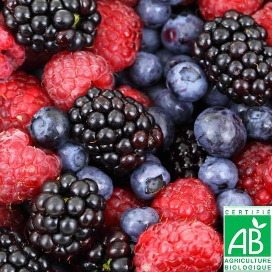 Mélange de Fruits des Bois 450gr