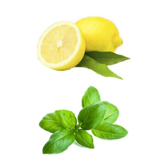 Bac 2.5L - Sorbet Citron Basilic