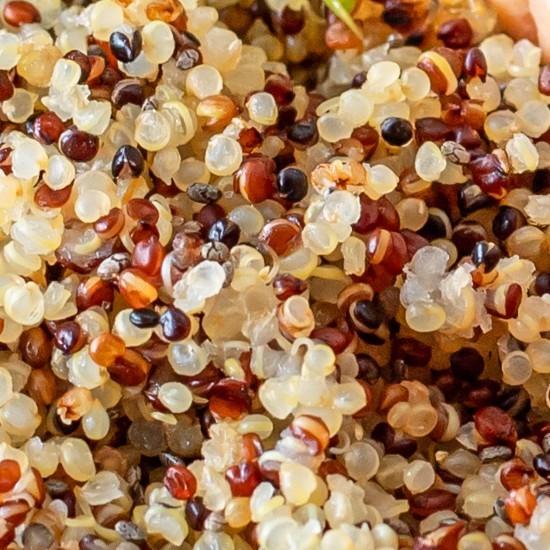 Mélange quinoa et boulgour